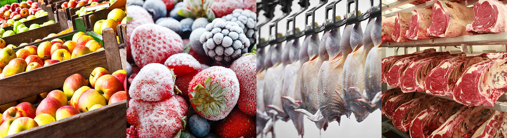 Fresh frozen fruit meat East Europe Serbia